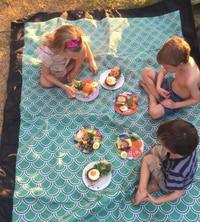 picnic dinner